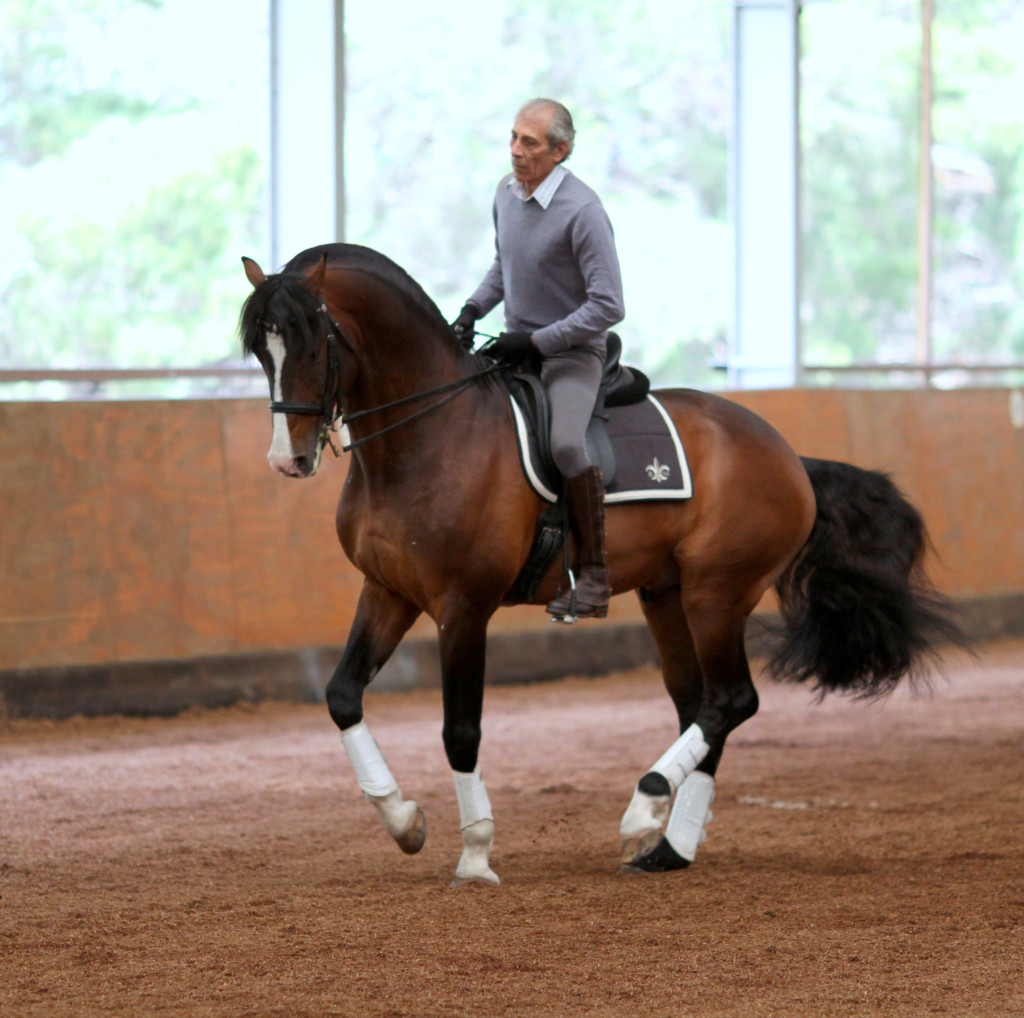 Manolo & Clint working pirouette