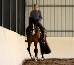Manolo is using the corner to position Clint for the travers. He uses the travers as a preparatory exercise for pirouettes.