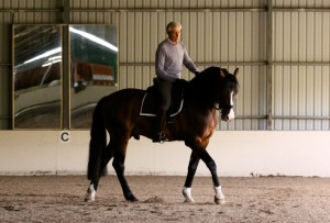A corner turn. Clint's outside hind leg does not cross in front of his inside hind leg. Properly riding a simple turn or square turn is PREPARATION along with lateral work for starting pirouettes. First, you must teach your horse to bend evenly throughout its body.