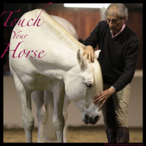 Touch Your Horse